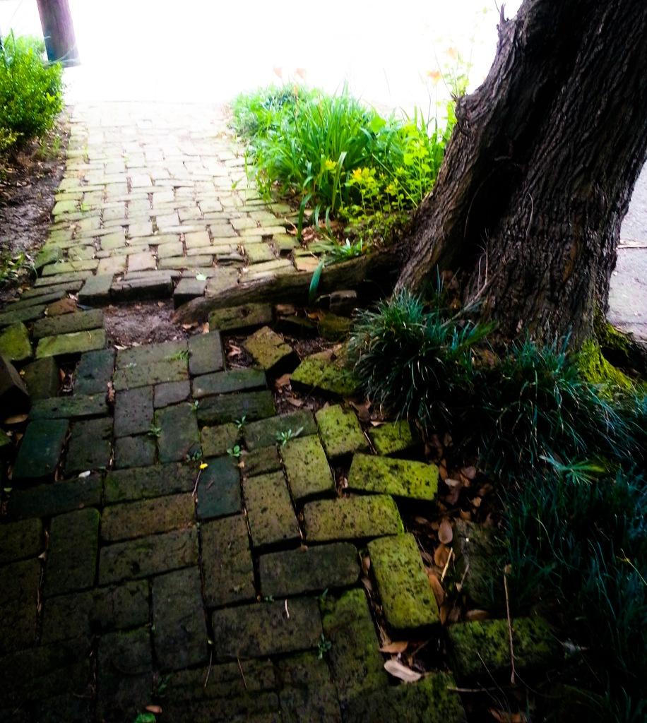 Sidewalk5